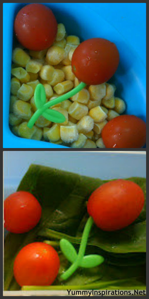 Tomato Flower Collage Kids Eating Veggies