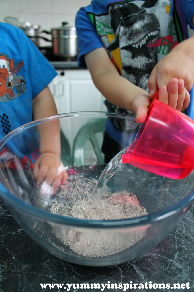 Cooking With Kids Chocolate Chia Cake