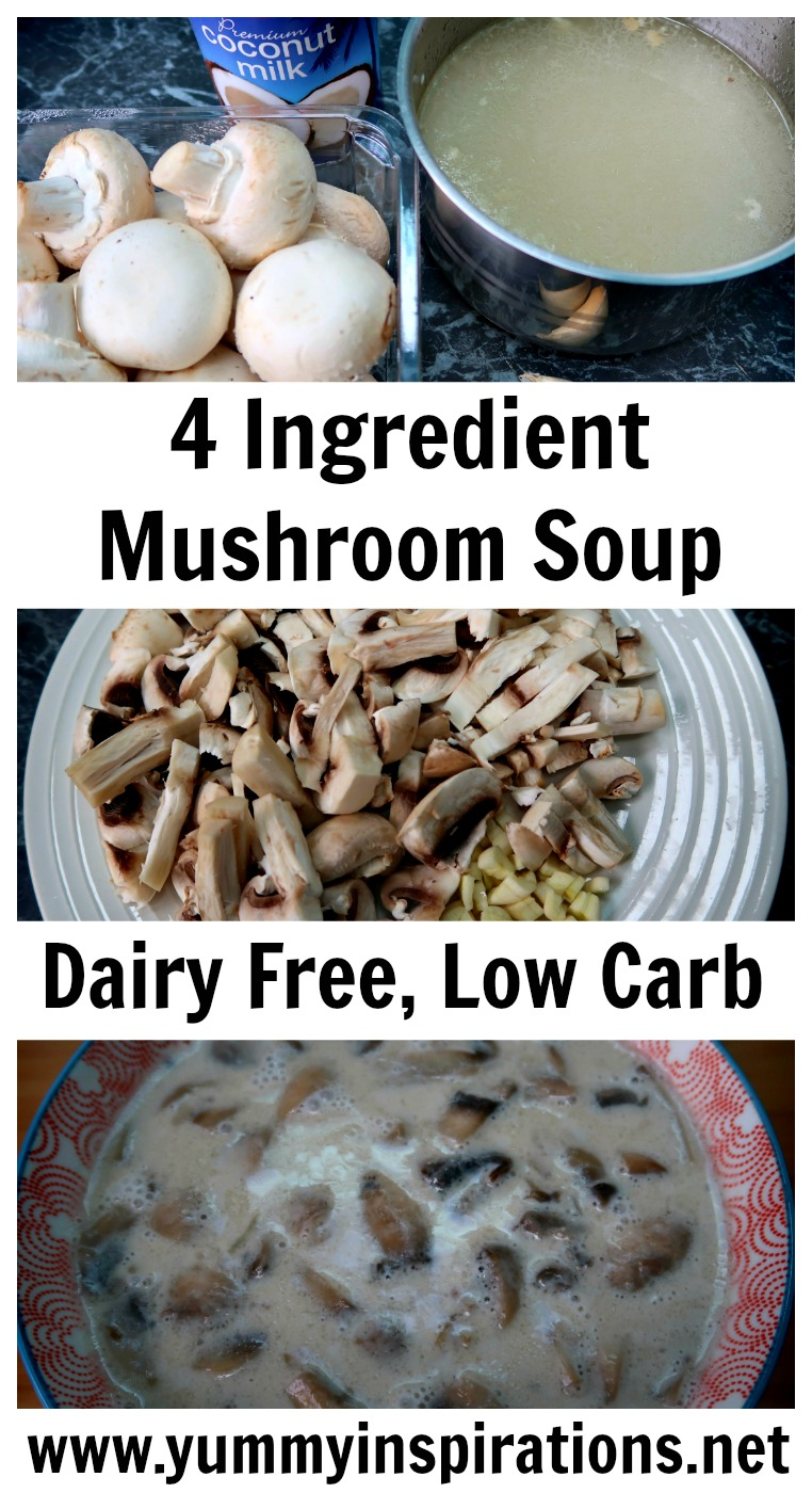 Easy 4 ingredient soup recipes